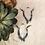 Thumbnail: WATER Goddess