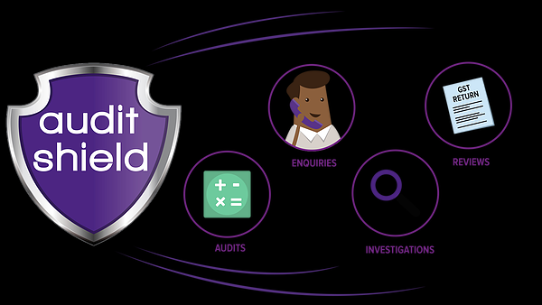 Audit Shield – Do You Need Cover?
