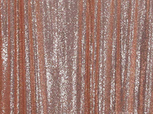 Rose Gold Sequin.png