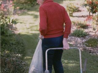 10 Easy Care Garden Success Tips from Karen Brown