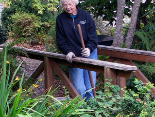 Meet Pat Sears, Founding Member and Volunteer