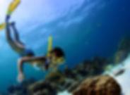 Snorkling Sri Lanka.jpg