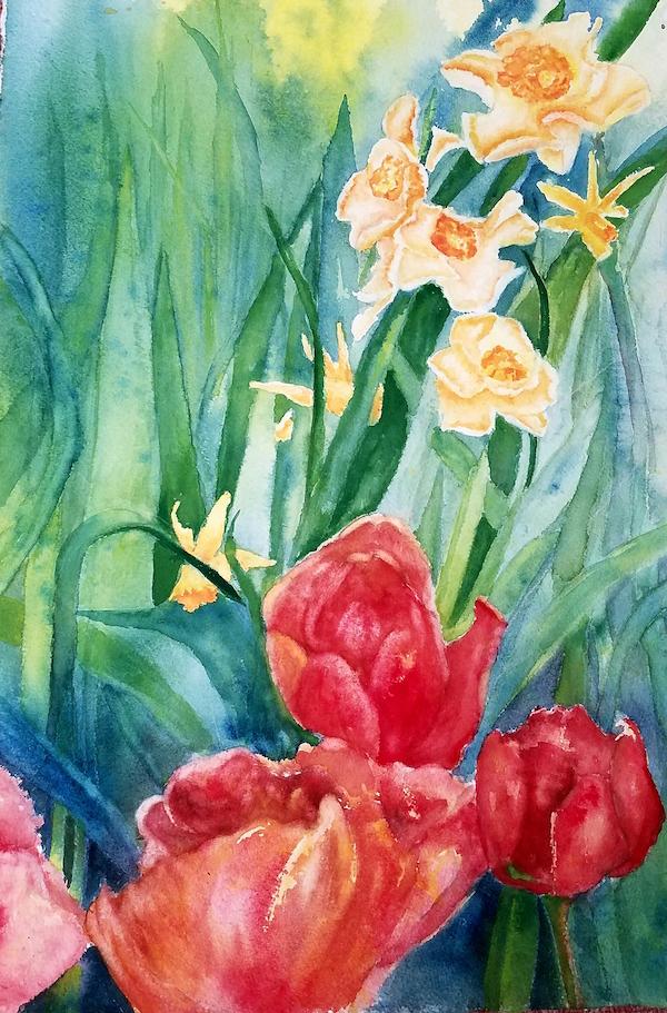 Tulip and Daffodils