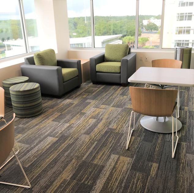 University of South Florida: The Village