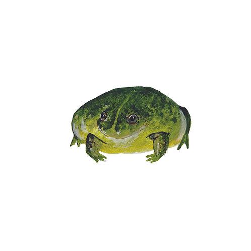 "8"" x8"" Frog Print! ""Electric Flatman"""