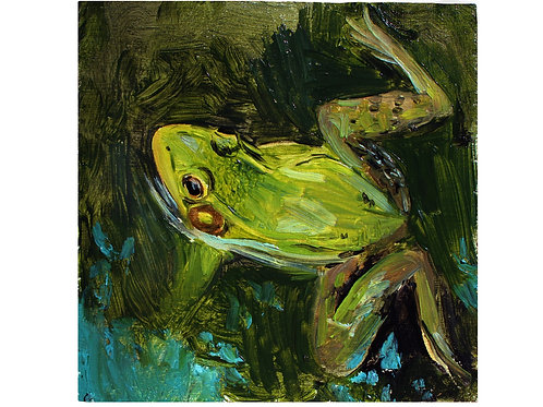 Green Frog Study - Oil