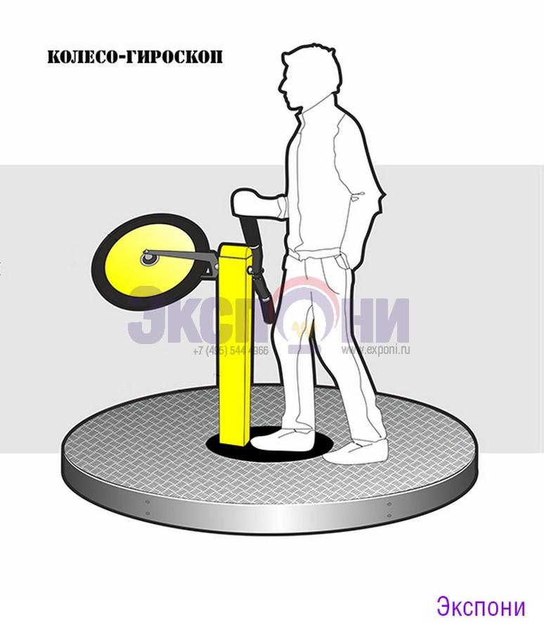 колесо-гироскоп_lp_vz.jpg