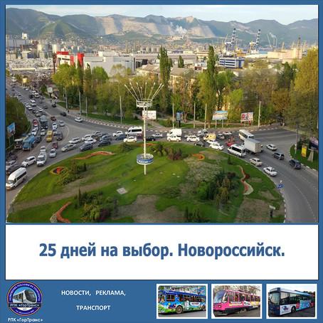 25 дней на выбор. Новороссийск.
