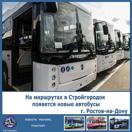 На маршрутах в Стройгородок Ростова-на-Дону появятся новые автобусы