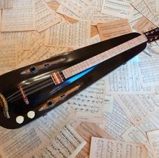 Violin Case Instruments
