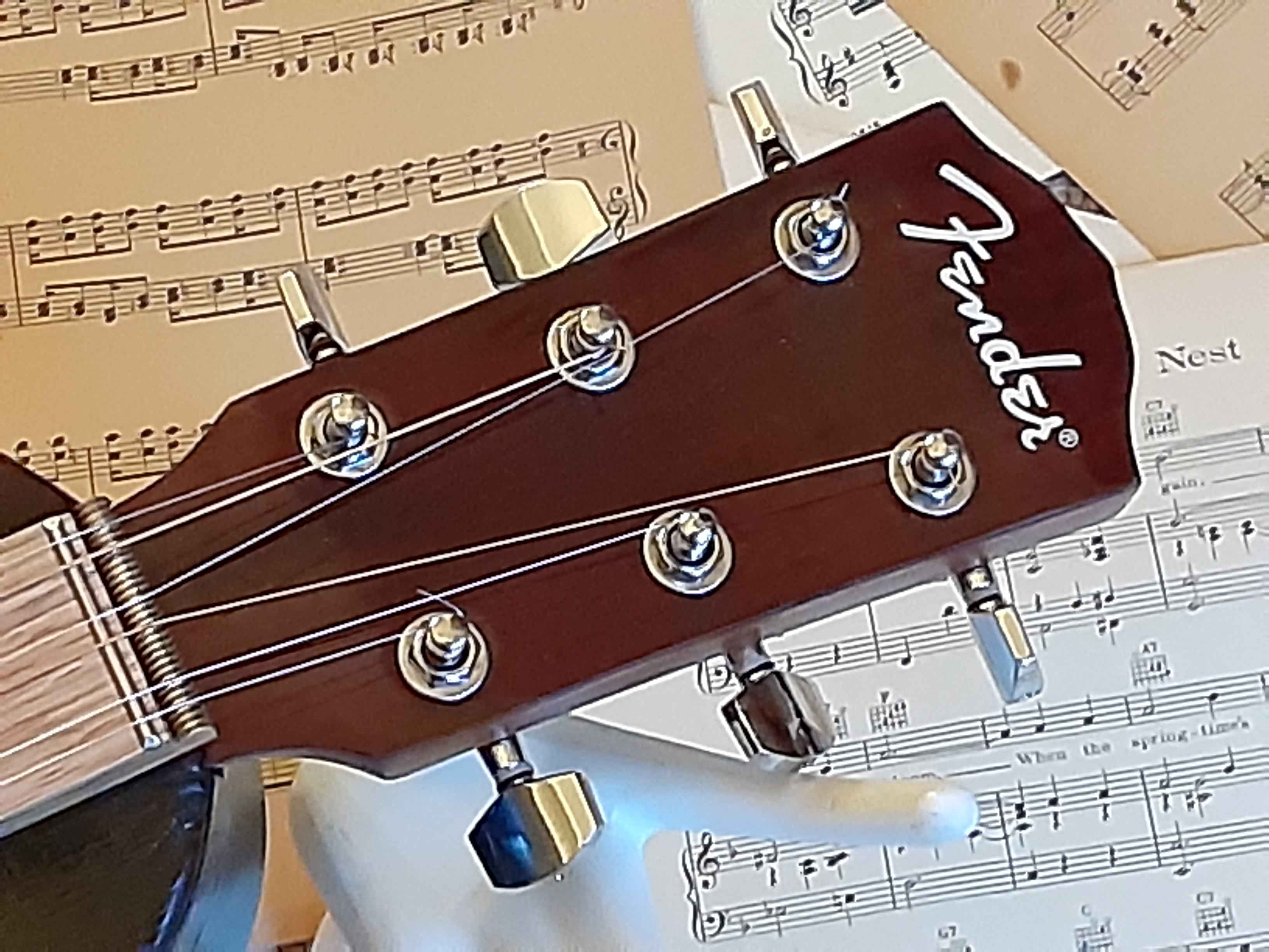 Repurposed Fender Neck/Headstock