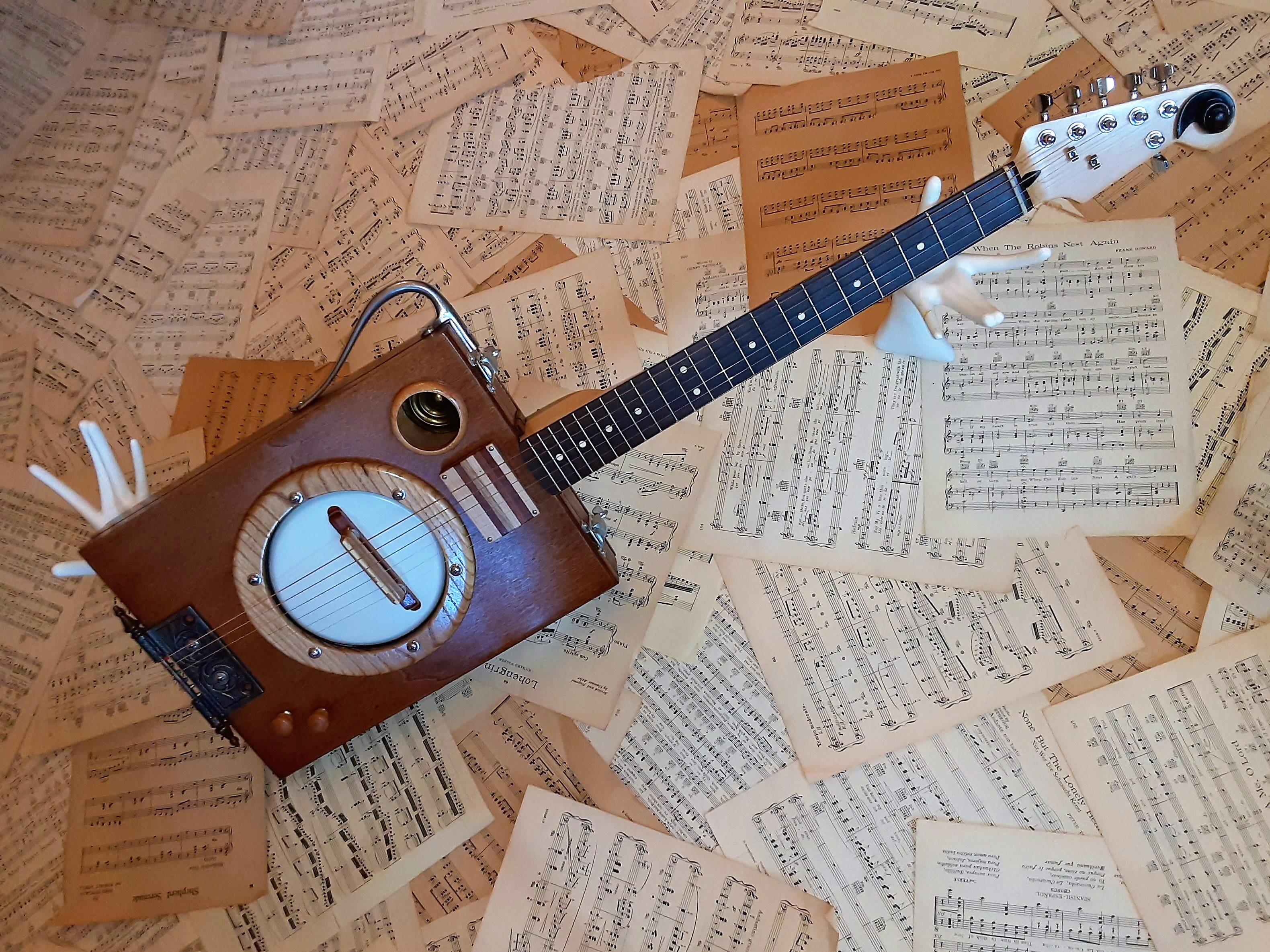 BanJovi Box Banjo/Guitar