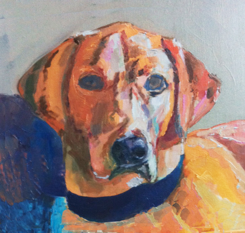 Pet portrait by Divya Sharma1
