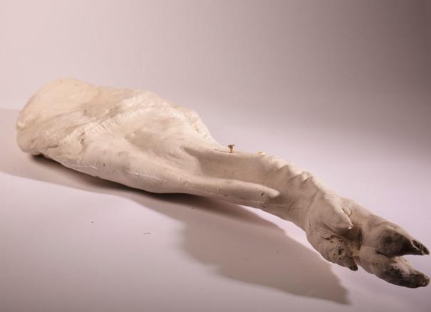 Ham leg.jpg