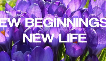 NEW BEGINNINGS & NEW LIFE