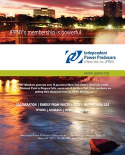 IPPNY Brochure