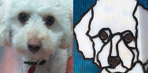 Hannah's Pup