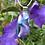 Thumbnail: Lavender Sea Pendant
