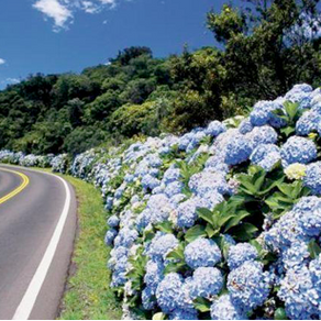 Three incredible road trips for motorbikers in Brazil