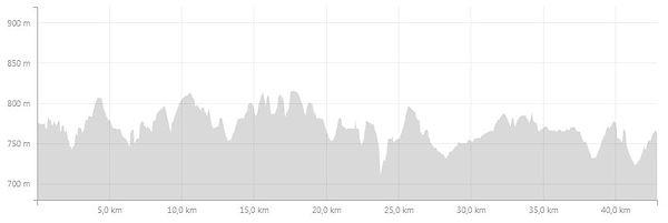 altimetria-maratona-Jerusalem-strava.jpg