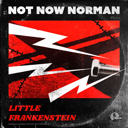 NNN Little Frankenstein Cover.jpg