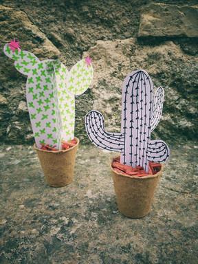 Atelier cactus à Puymirol pour le Zebraco