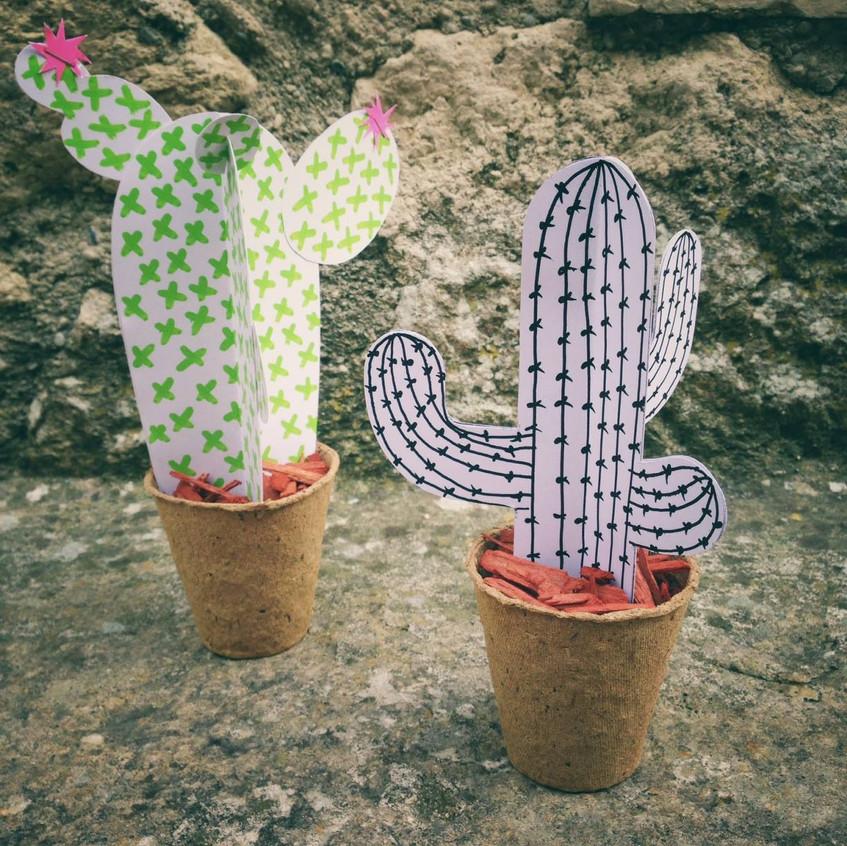 Des modèles de cactus...