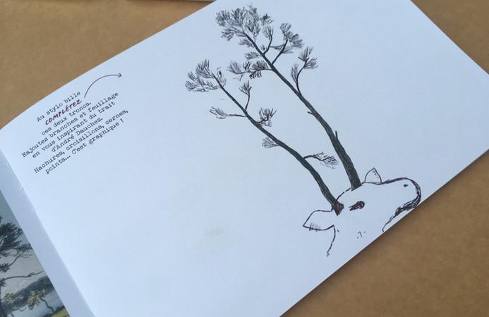 Les arbres de Mathilde