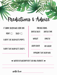 Baby Predictions & Advice.png