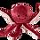 Thumbnail: Fluff&Tuff Toys: Olympia the Octopus