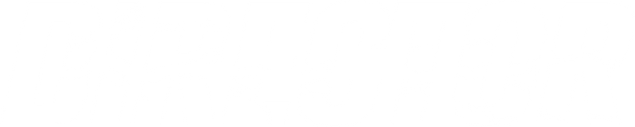 DIRECTOR Logo WHite.png