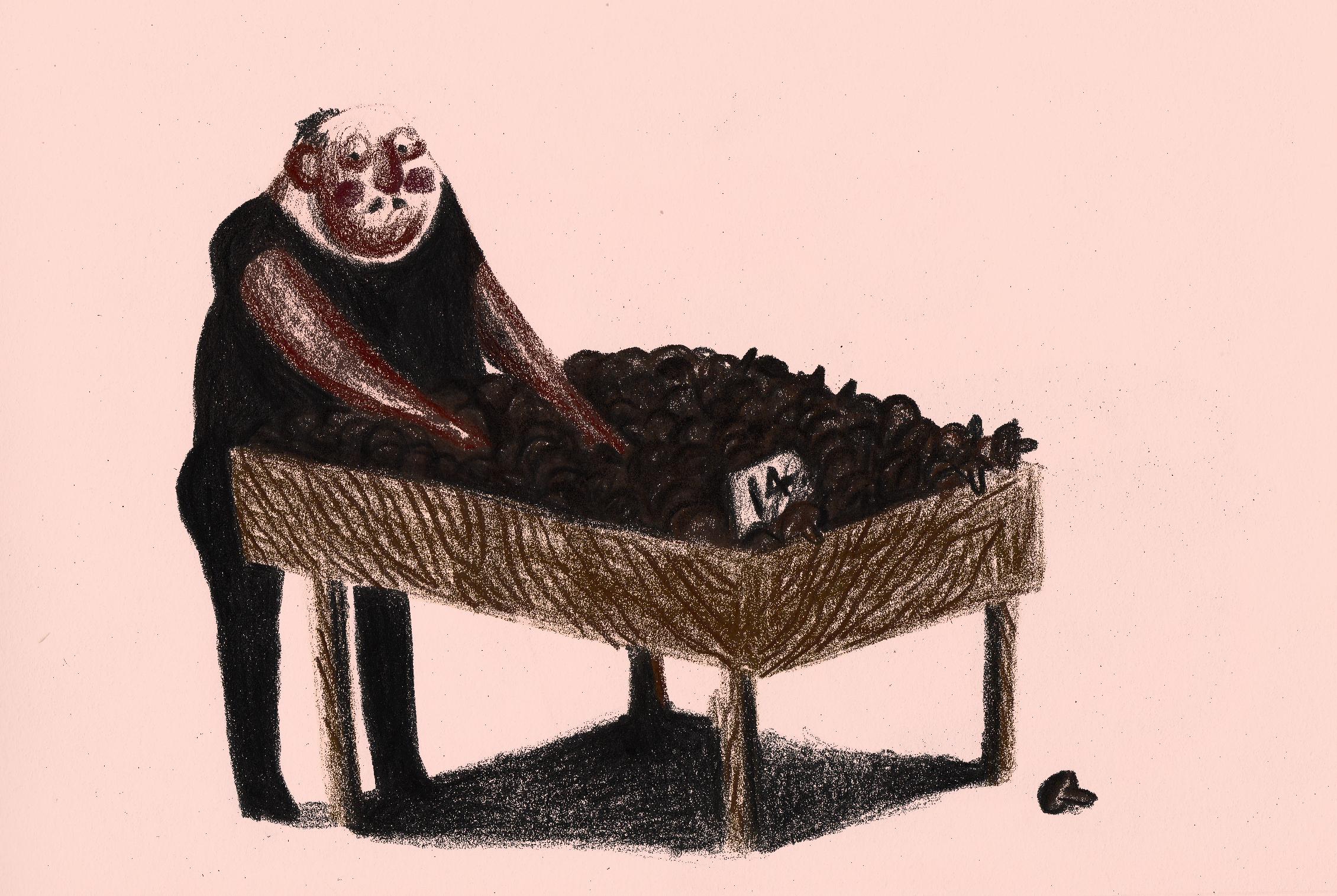 grzybiarz