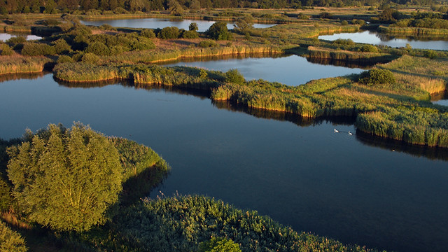 The Accidental Wilderness - Europe's Everglades