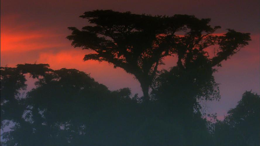 Iguacu (11).jpg