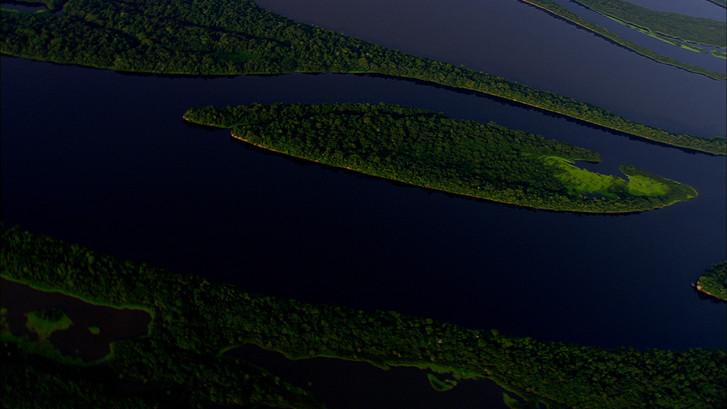Amazon Alive_Part 1_Aerial.jpg