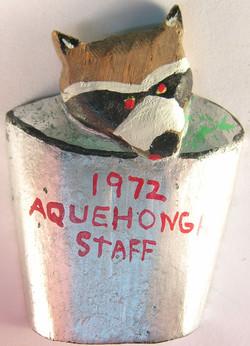 Camp Aquehonga-11