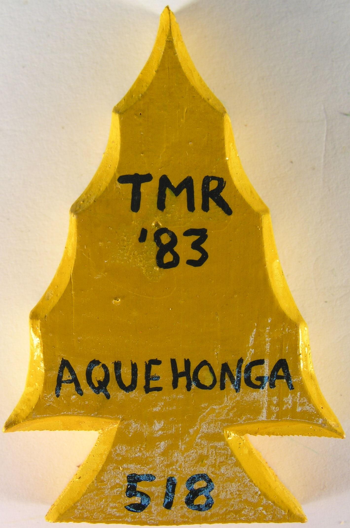 Camp Aquehonga-26