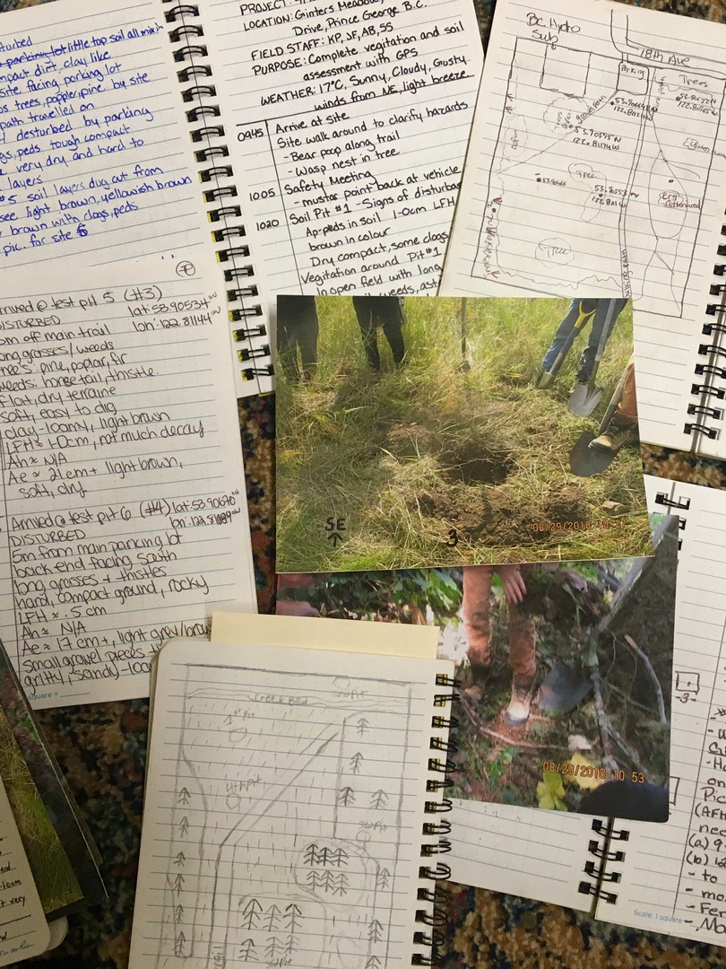 Field Notes taken by QUEST Plus Environmental Monitoring students in Prince George.
