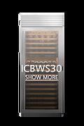 ICBWS30