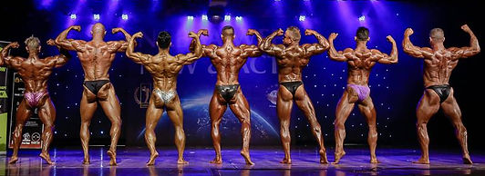 Bodybuilding competition lineup, bodybuilding nabba wff nsw act,