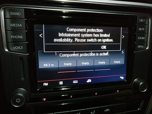 Audi Volkswagen Seat & Skoda Component Protection Removal Service