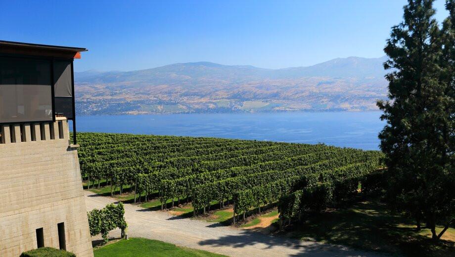 Okanagan Valley Vineyards
