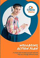 Wellbeing action plan.png
