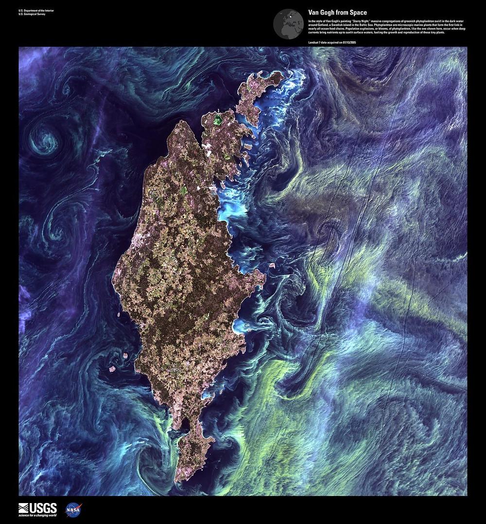 NASA fitoplâncton Van Gogh