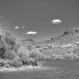 Saguaro by the Lake.jpg