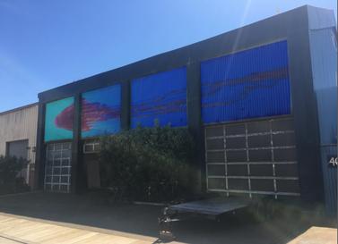 Jellifish at SandCity, CA