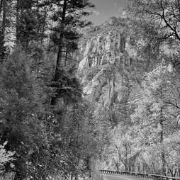 Creek Road II.jpg