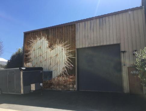 Pricky Heart, SandCity, CA