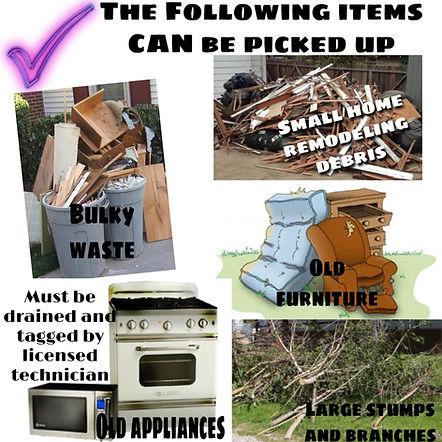 items allowed.jpg