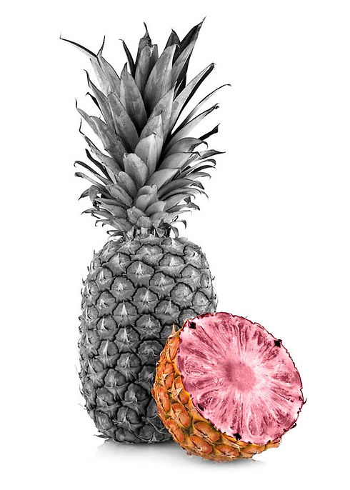 pineapple with pink flesh halved genetically modified black and white with colour